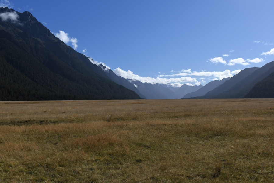 NZ milford eggleton valley.JPG