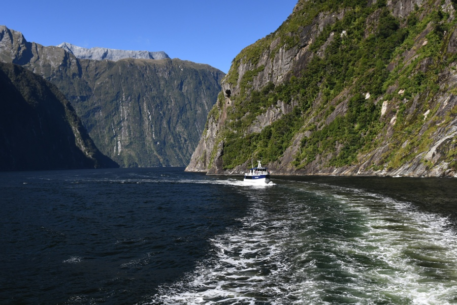 z NZ milford passage.JPG